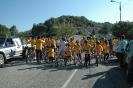biciclando 2014-14